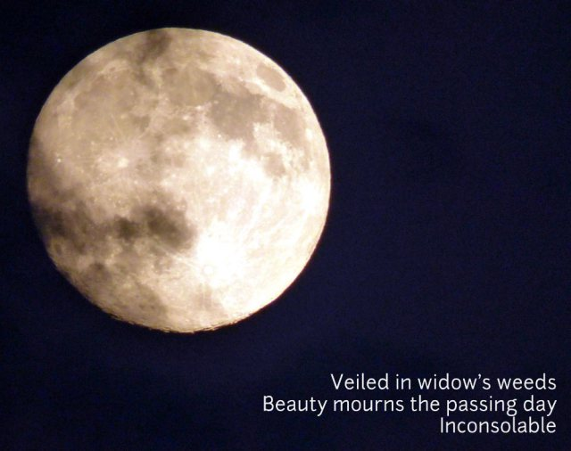 Veiled in widow's weeds Beauty mourns the passing day Inconsolable