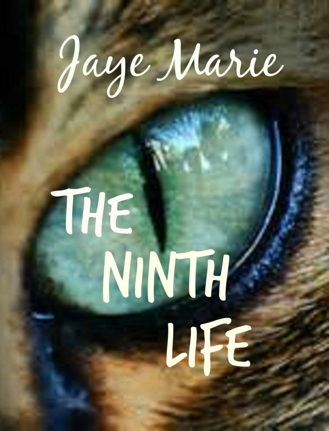 ninth life_kindle