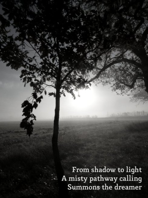 From shadow to light A misty pathway calling Summons the dreamer