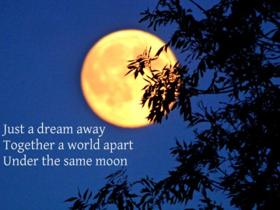 Just a dream away Together a world apart Under the same moon