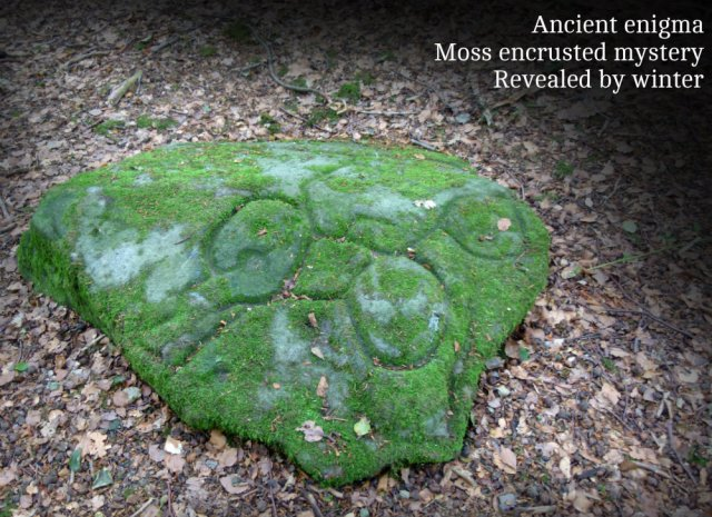 ancient-enigma-moss-encrusted-mystery-revealed-by-winter