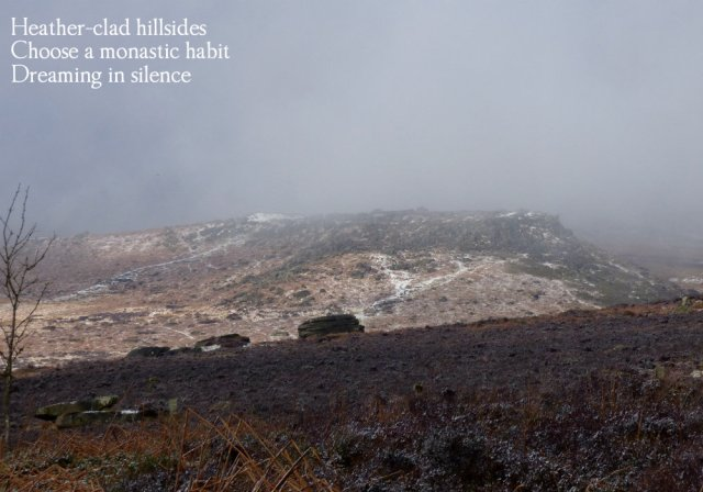 heather-clad-hillsides-choose-a-monastic-habit-dreaming-in-silence