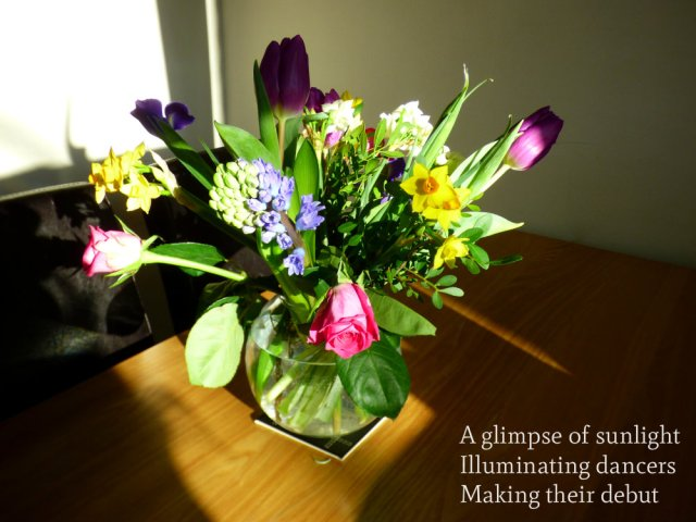 image-of-spring-flowers-a-glimpse-of-sunlight-illuminating-dancers-making-their-debut