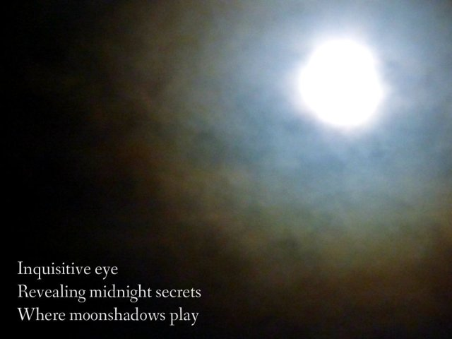 inquisitive-eye-revealing-midnight-secrets-where-moonshadows-play