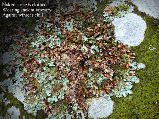 naked-stone-is-clothed-wearing-ancient-tapestry-against-winters-chill