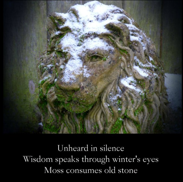 image-statue-of-lioncovered-in-snow-and-moss-unheard-in-silence-wisdom-speaks-through-winters-eyes-moss-consumes-old-stone