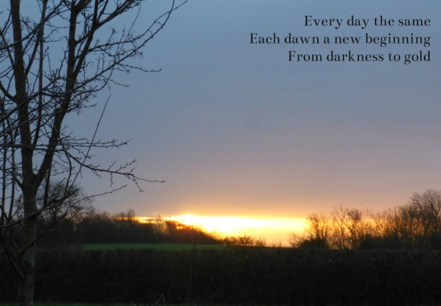 every-day-the-same-each-dawn-a-new-beginning-from-darkness-to-gold