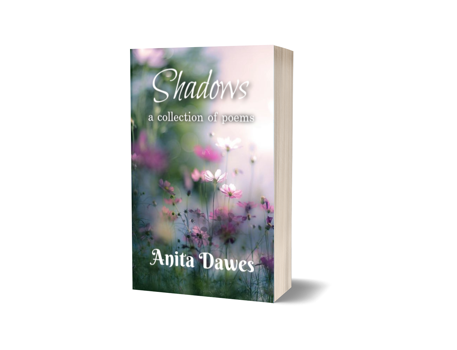 Cover image of Shadows, a book of poems